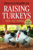 Raising-Turkeys
