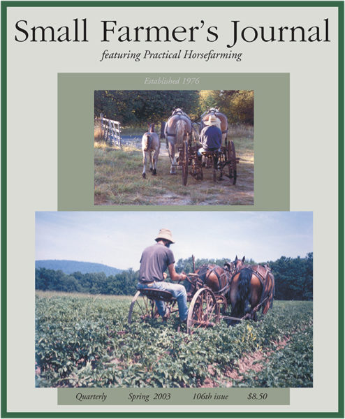 Spring 2003 Cover