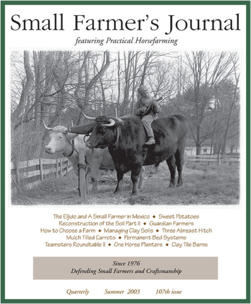 Summer 2003 Cover