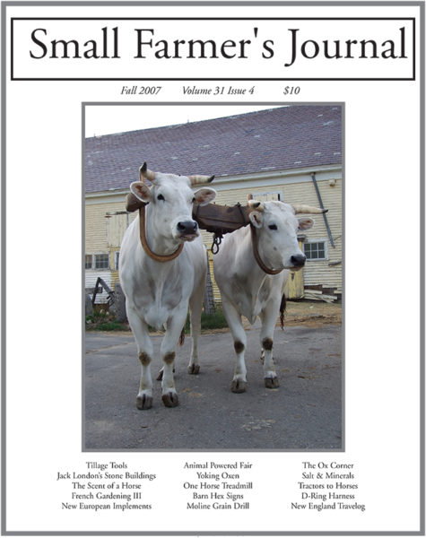 Fall 2007 Cover