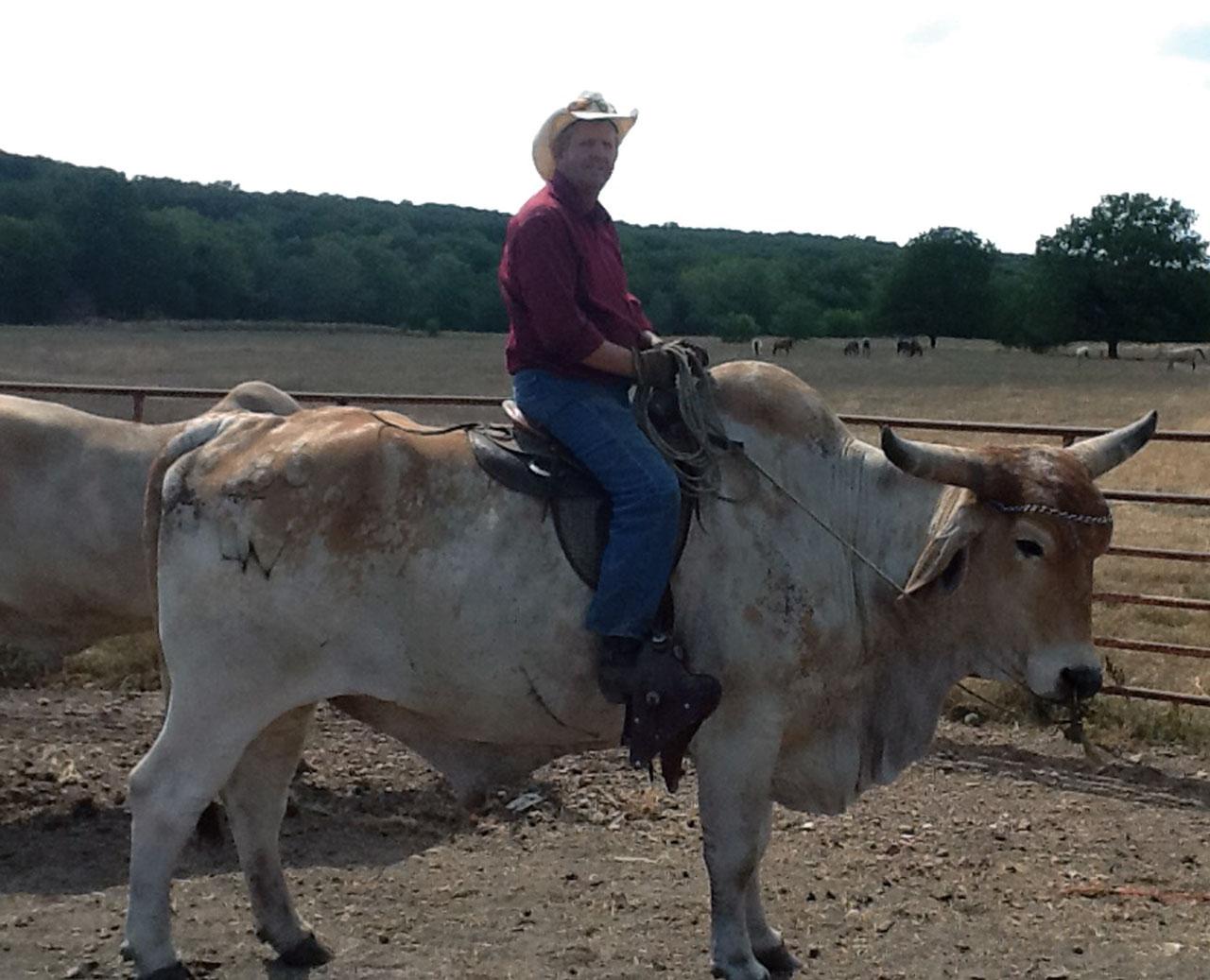 Oxen Experiences