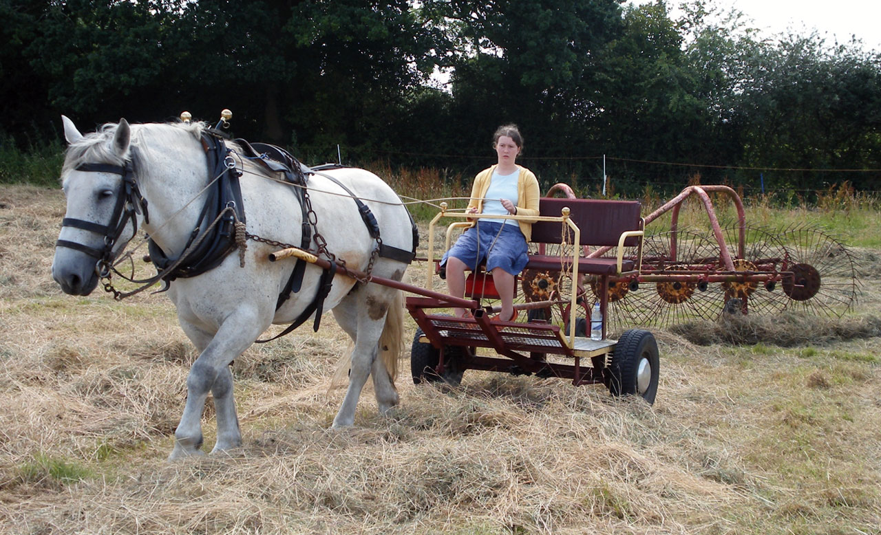 Hay Making with a Single Horse Part 1