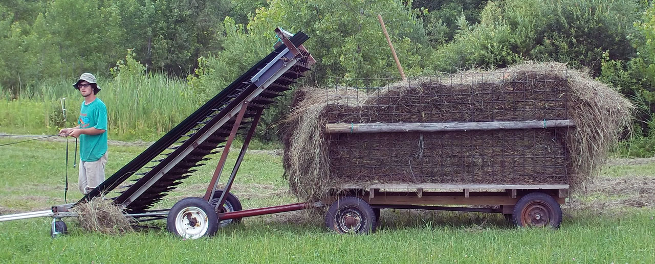 Geiss New-Made Hay Loader