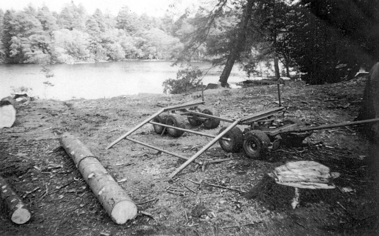 Big Logs at Tarn Hows