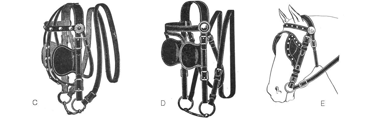 bridle-2