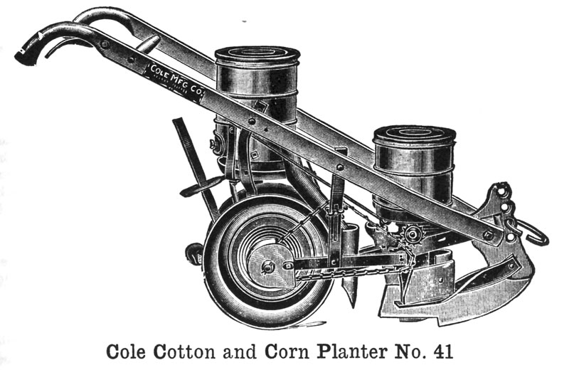 cole-11