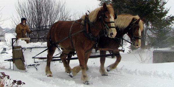 Horse Powered Snow Scoop
