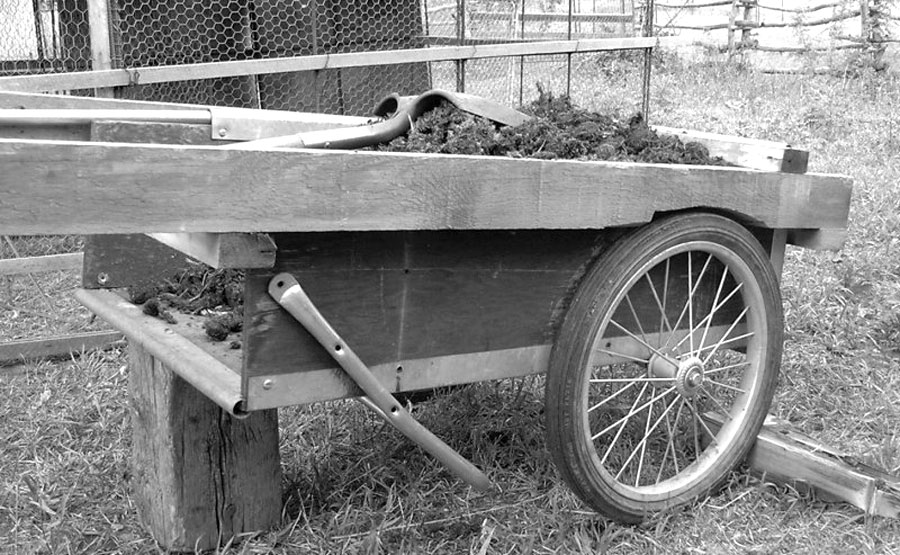 A Pony-Powered Garden Cart