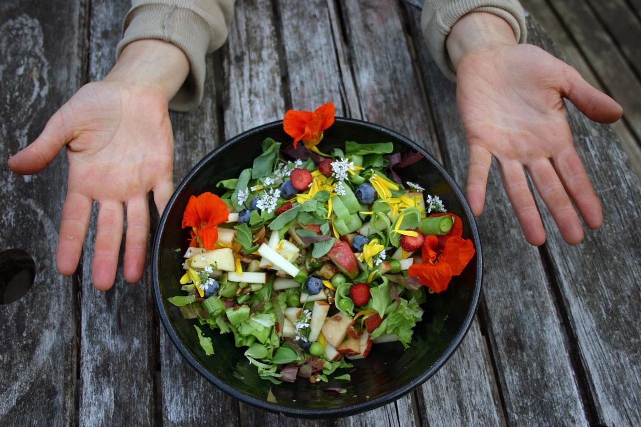 Hand-Harvested Food Challenge