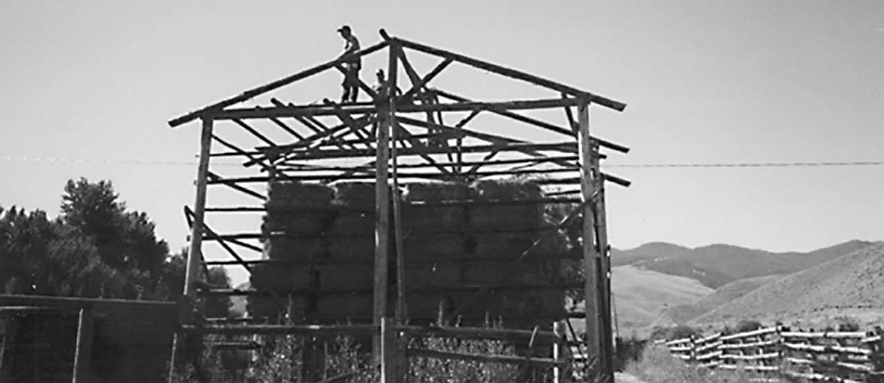 Building an Inexpensive Pole Barn