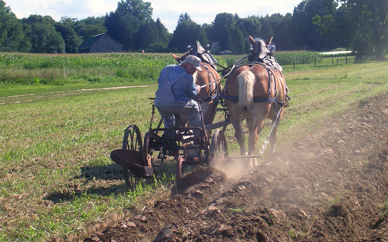 Fjordworks Plowing the Market Garden