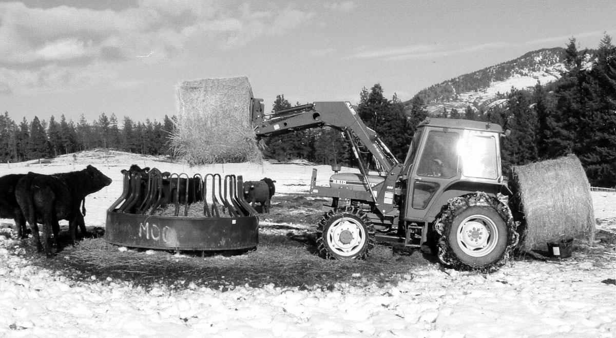 Low Impact Ranching