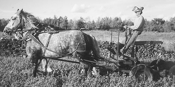 Two Log Cart Designs from Canada