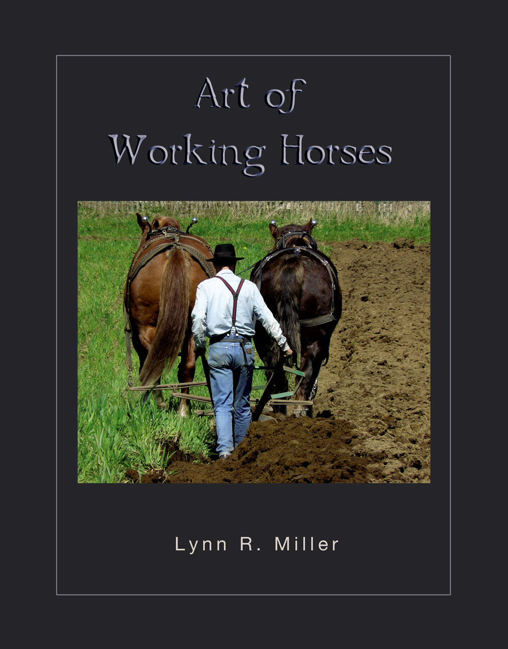 Art of Working Horses Hunter Review