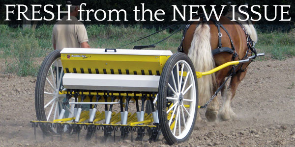 New Horsedrawn Minimum Till Seed Drill