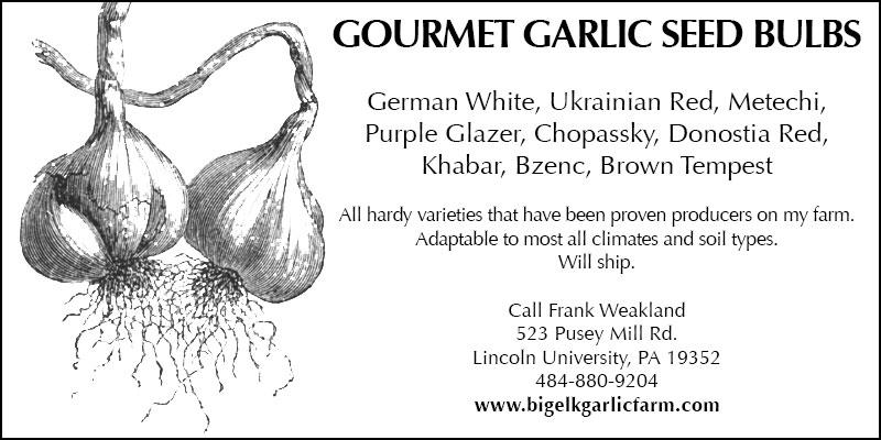Big Elk Garlic Farm