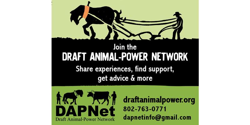 DAPnet