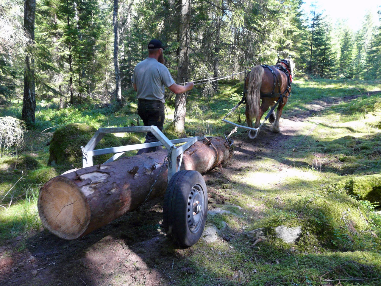 SmP Hellmans Logging Equipment for Horse Traction