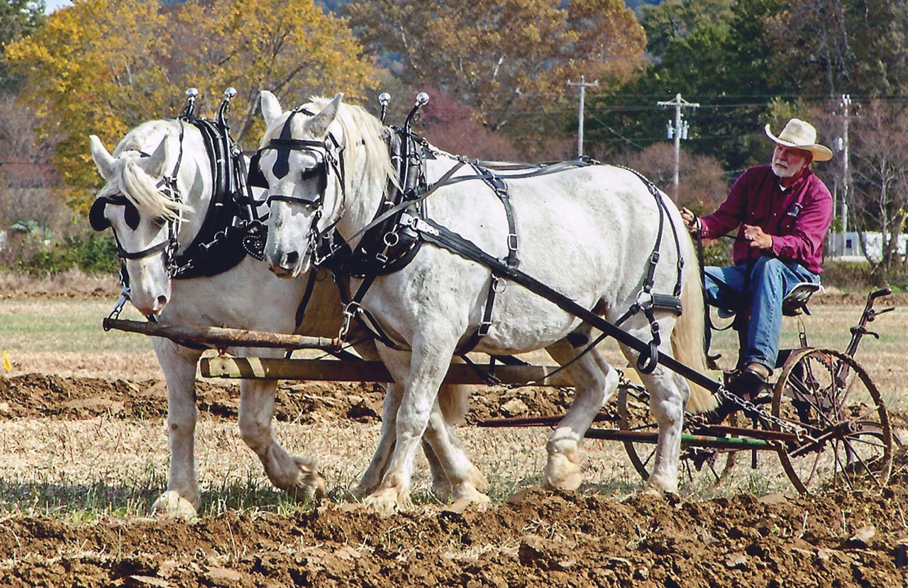 13th Annual US Draft Horse and Mule Plowing Contest