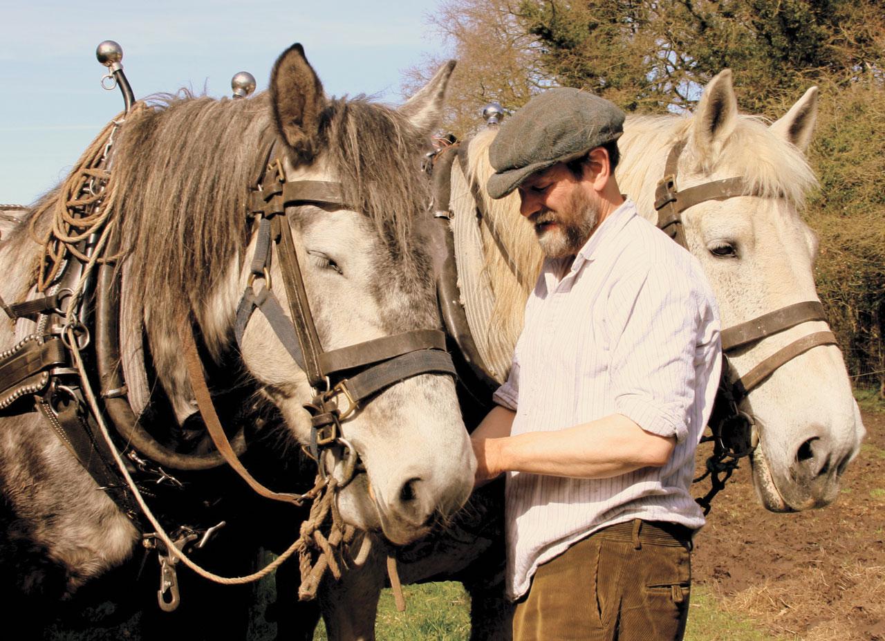 Good Horses
