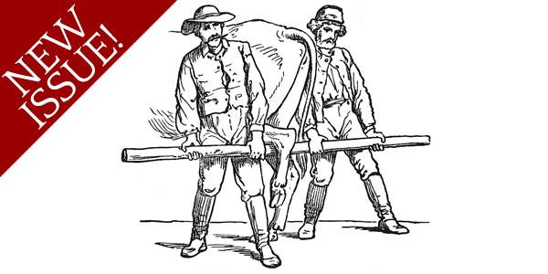 Horseshoeing Part 7C