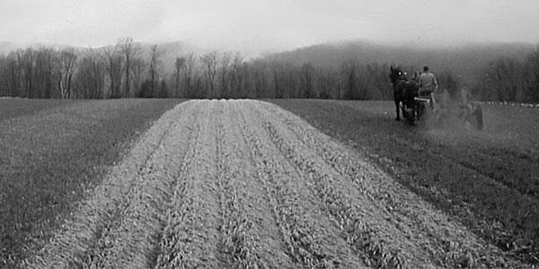 Cultivating Questions Ridge-Till Retrospective