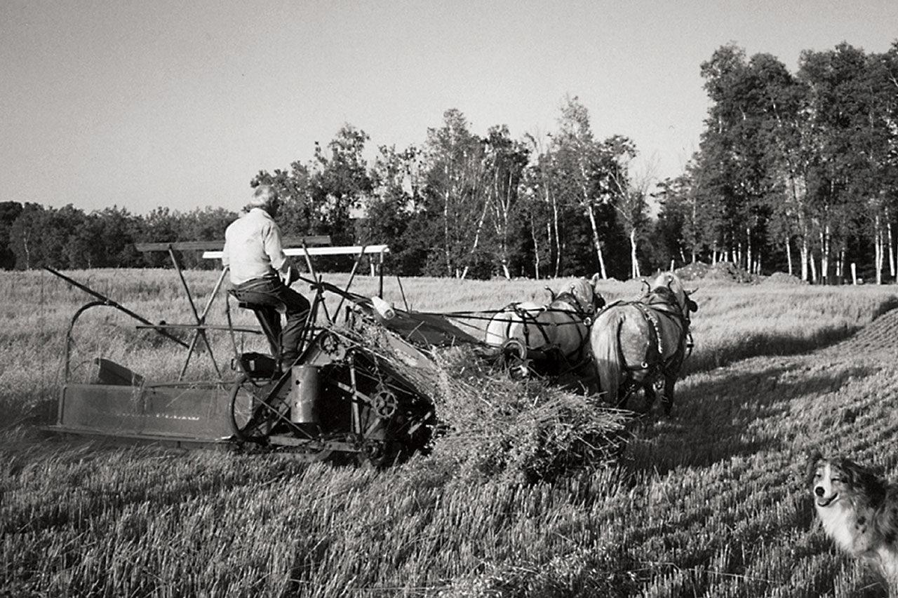 Minnesota Farm Visit