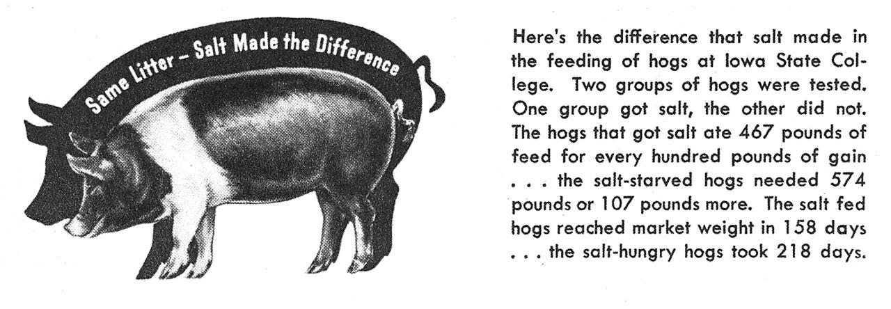 Salt Requirements of Animals Differ