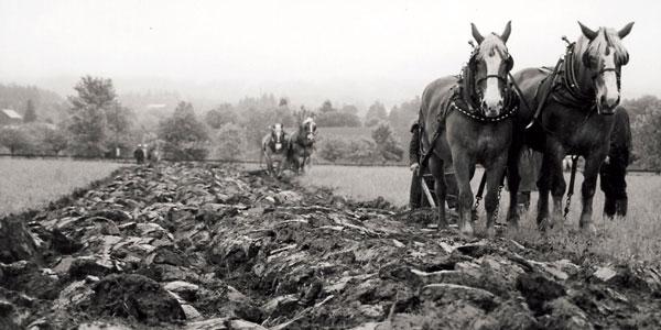 Plowing in the Rain