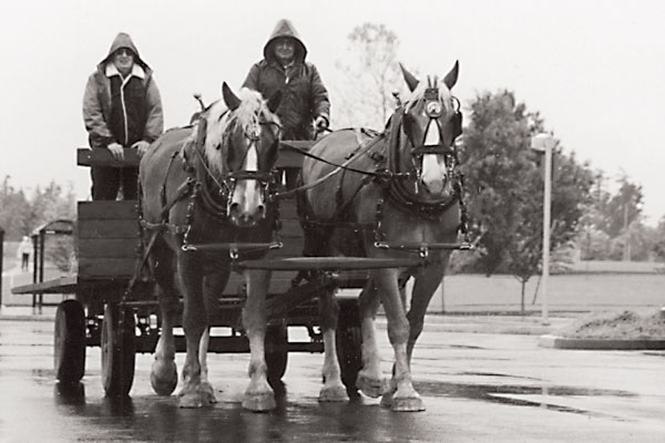 Plowing in the Rain