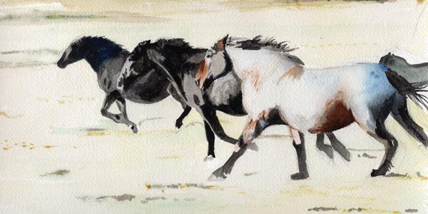 Put to Pasture