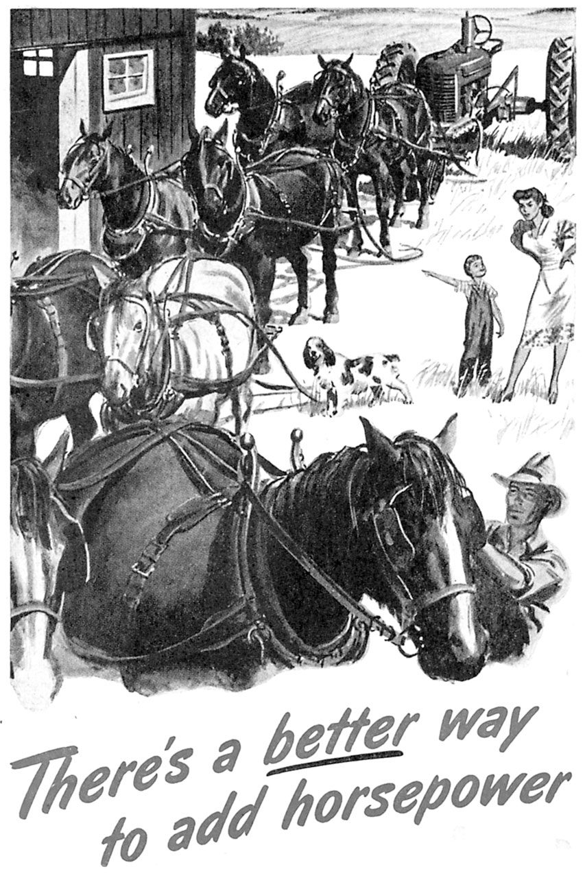 HCL How Many Horses