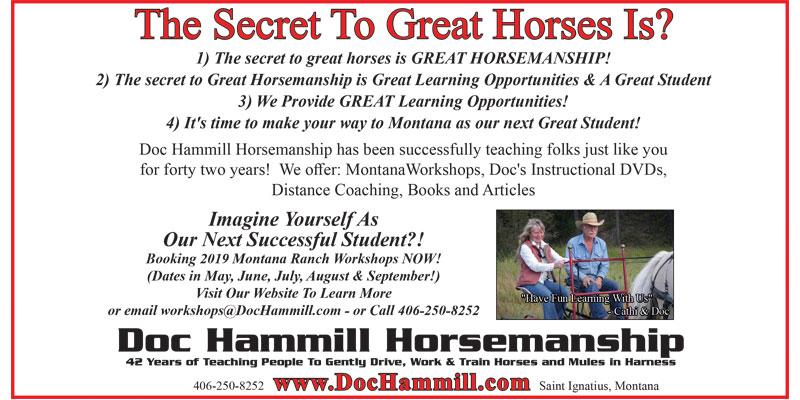 Doc Hammill Horsemanship
