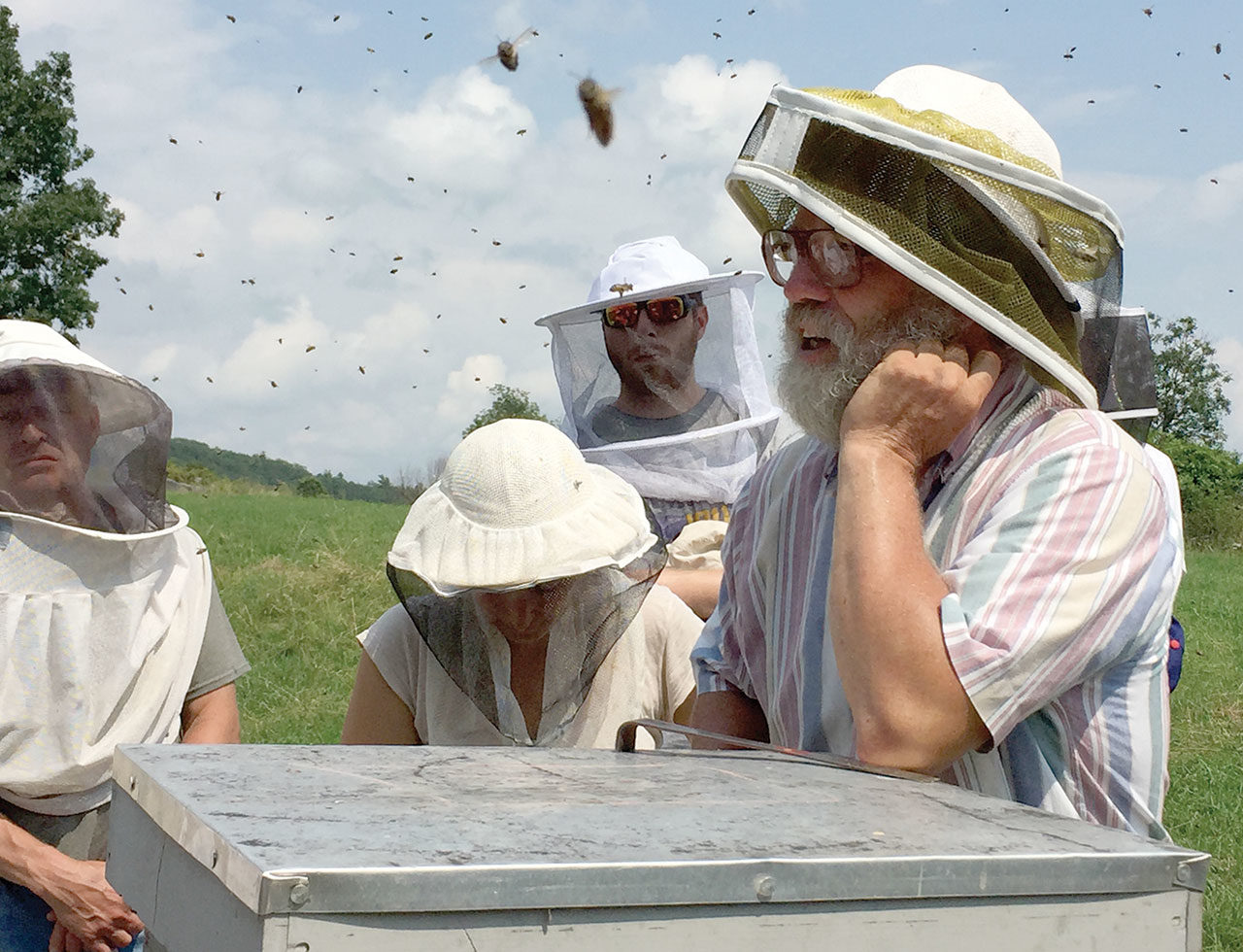 Beekeeping and Honey Hunting on Six Continents