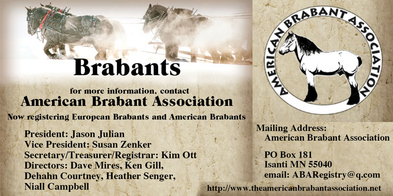 American Brabant Association