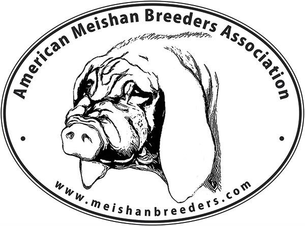 Meishan Pigs