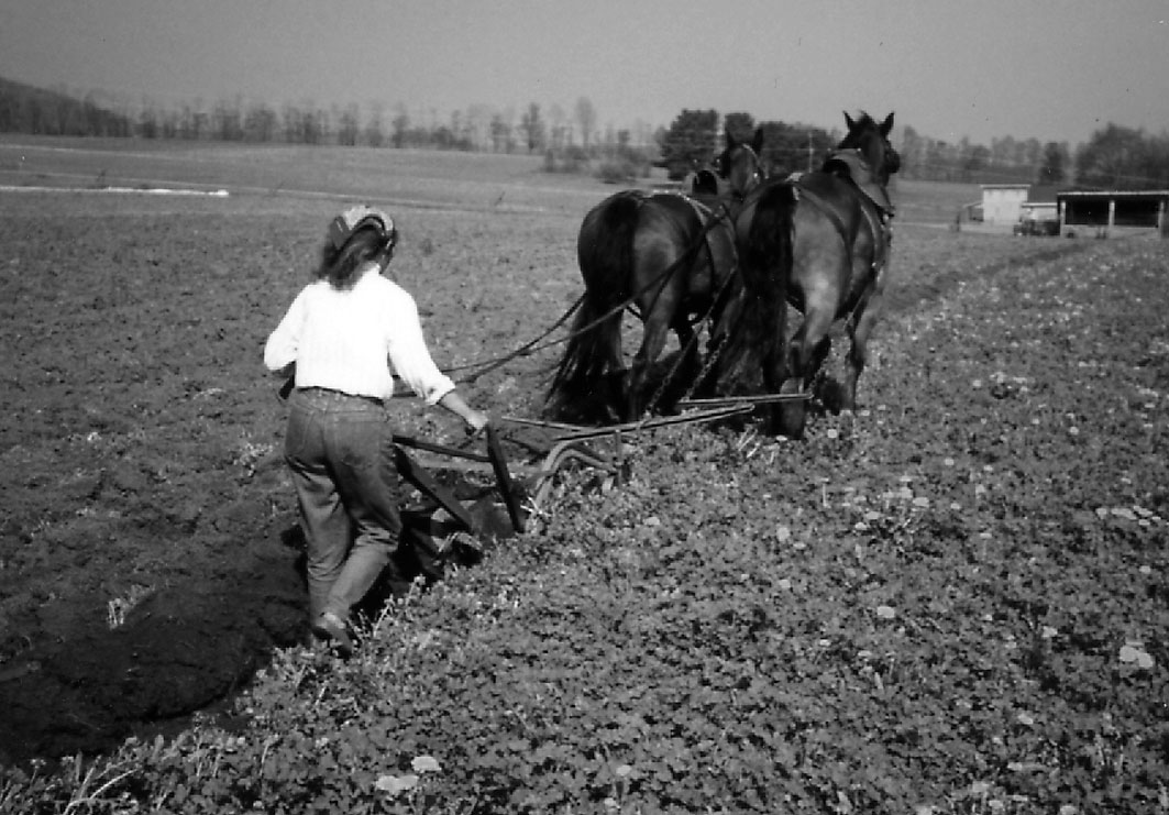 Cultivating Questions the Well-Being of Small Farmers