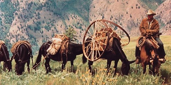 Montana Muleskinner Jack Eden