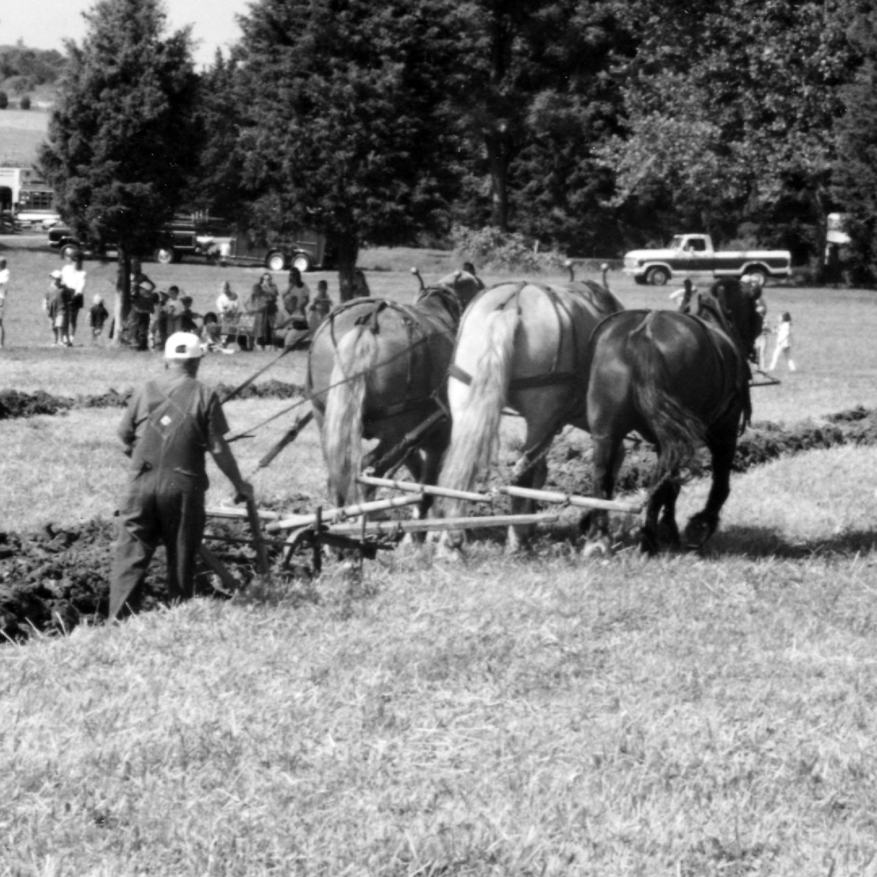 Plowing Match at Howell Farm