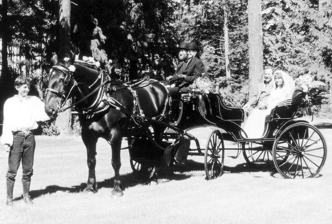 Starting a Carriage Company from Scratch