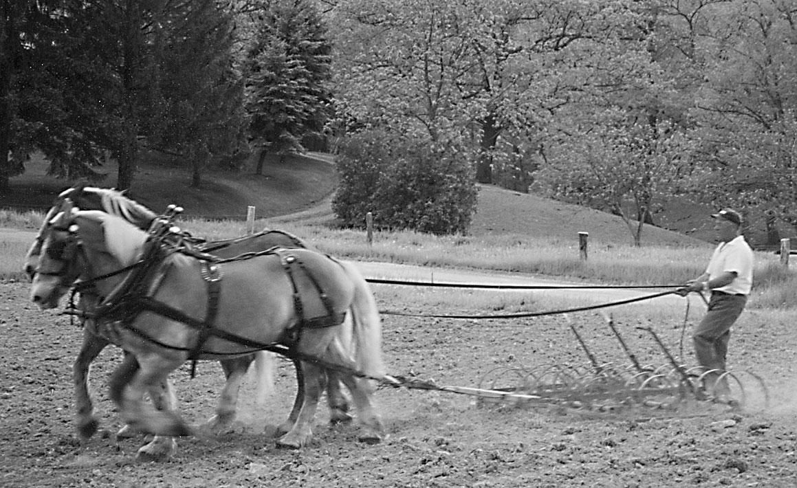 Bob Schall Plumcreek Horsefarmer