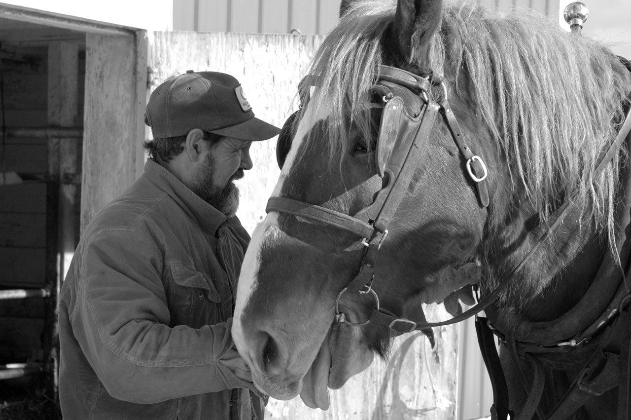 Horsedrawn Dairy