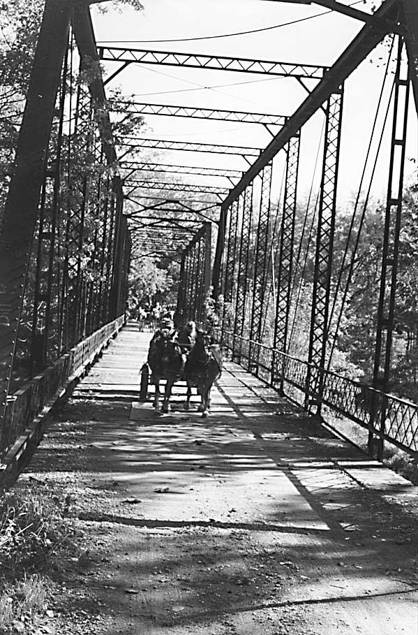 Ohio Haflingers Fall Ride and Drive Over the Bridge of Dreams
