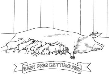 Farm Animal Coloring Book Page 5