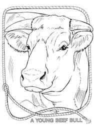 Farm Animal Coloring Book Page 6