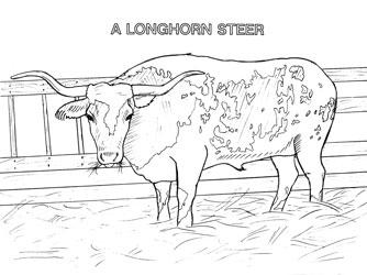 Farm Animal Coloring Book Page 8