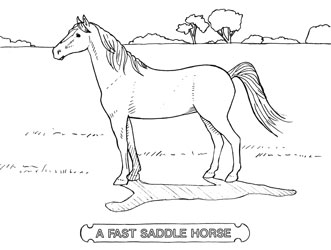 Farm Animal Coloring Book Page 14