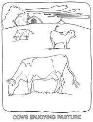 Farm Animal Coloring Book Page 16