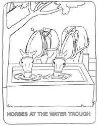 Farm Animal Coloring Book Page 22
