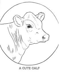 Farm Animal Coloring Book Page 31